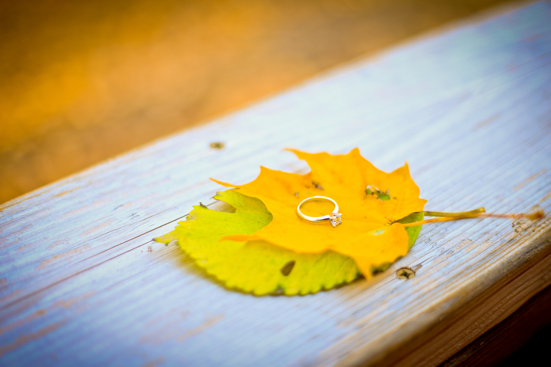 Outdoor rustic Autumn Fall Engagement Session in Minooka, IL by Kelsey Jorissen Photography