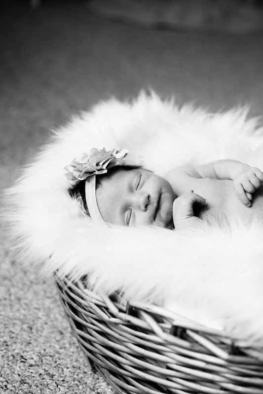 Black and white newborn, Milwaukee in-home newborn session by Kelsey Jorissen Photography