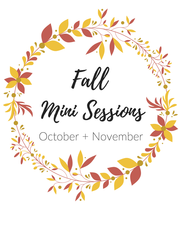 Mini Sessions are available in October and November of this year