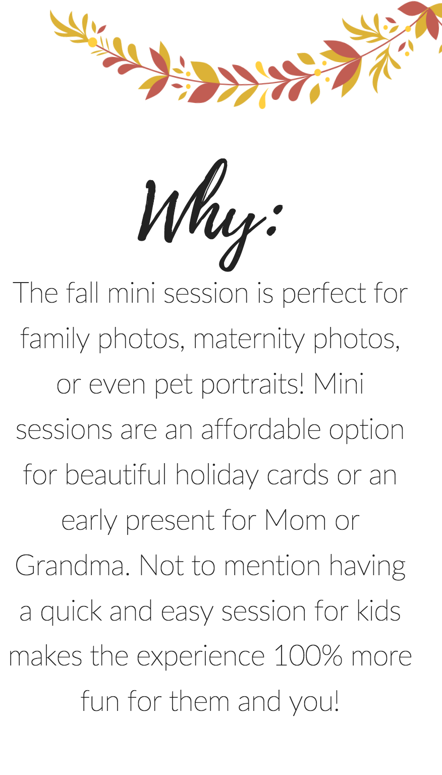 A mini session is great for holiday card portraits, an early present, or just for fun